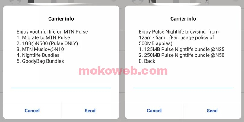 Subscribe to mtn night plan