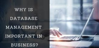 importance of database management